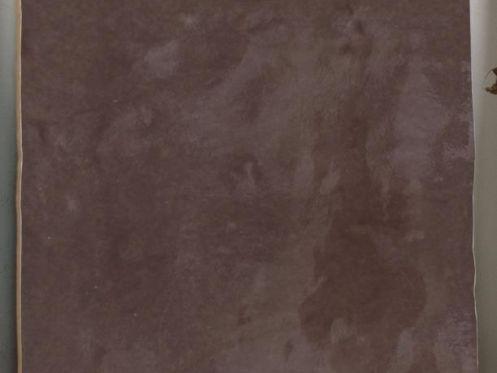 Carrelage sol et mur mural provenza marron brillo 10x10 for Carrelage 10x10